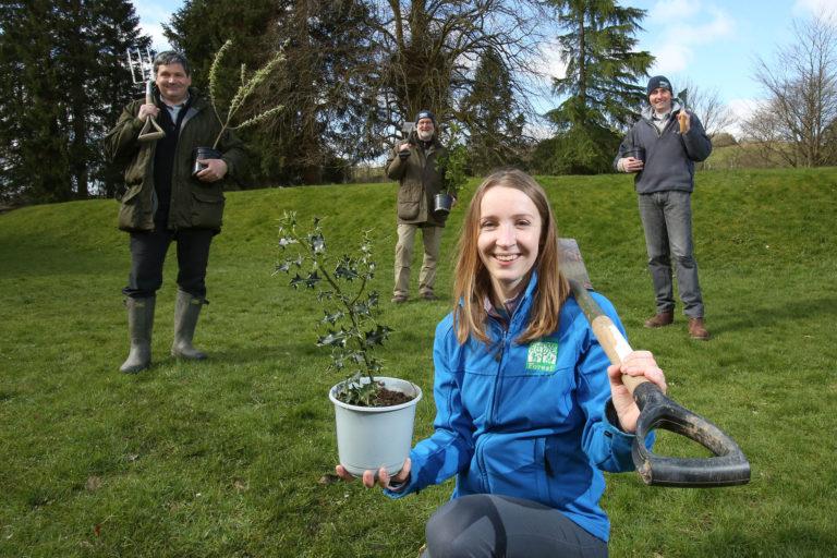 South of Scotland tree planting initiative